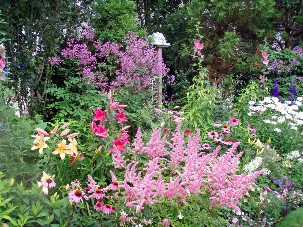 Our services dutra designs organic nantucket landscape for Garden care maintenance