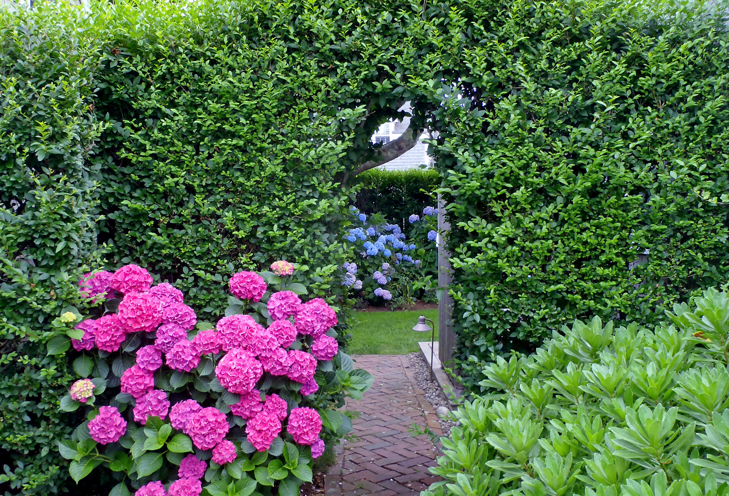 Nantucket Hedge