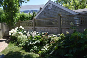 Nantucket Shade Garden